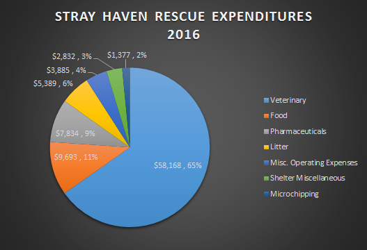 Pie Chart Expenditures 2016 from Excel