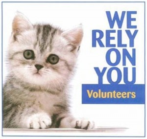 Volunteer_pic_we_rely_on_you